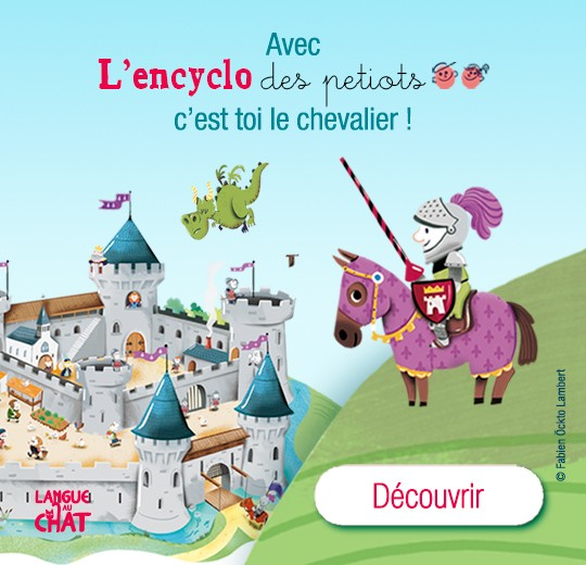 3324_1_MEA2images_Ordi_Encyclo-chateau.jpg
